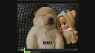 YouTube動画から動く画像を作る超簡単な方法