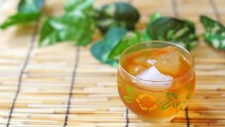 水分補給に最適なお茶は?緑茶・麦茶・ほうじ茶を比較