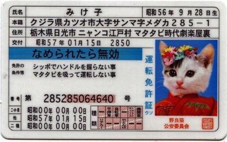 警察署での自動車免許更新は面倒でした in 広島