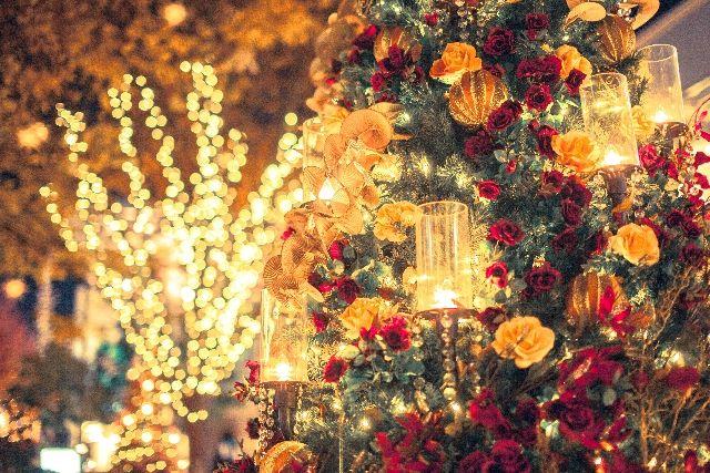 豪華なクリスマスツリーのイルミネーション