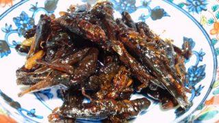 【閲覧注意】日本にある昆虫食レストランランキング!虫を食べてみていならまずは外食でプロの味を