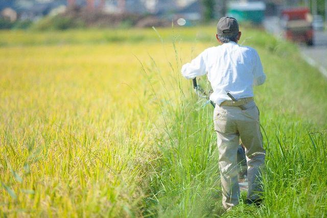 定年退職後に農作業をする年寄り