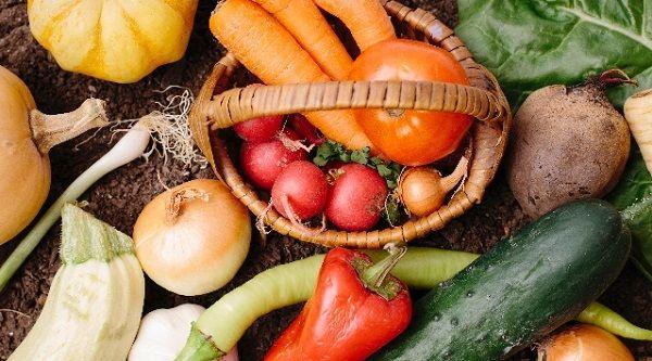 様々な新鮮野菜