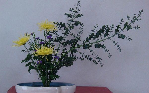 菊とアスタで作られた未生流生け花