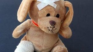 犬の下痢・嘔吐の原因とは?~症状と対処について~