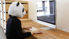 パソコンに集中するスーツ姿のパンダさん